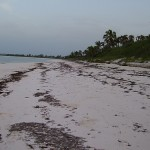 Beach House Rental Eleuthera