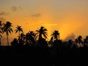 dec_2009_sunset